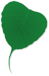 green-157433_640
